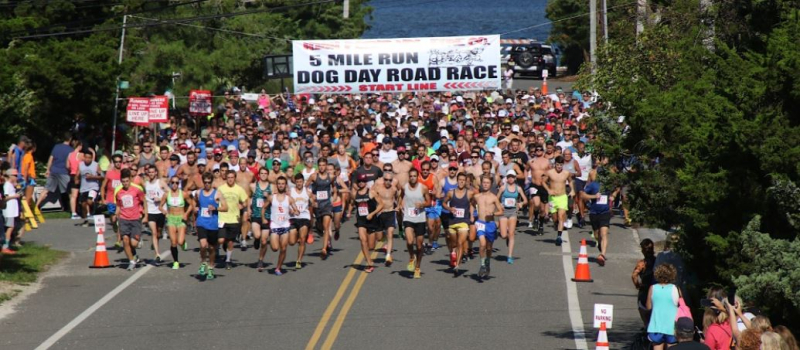 Annual-dog-day-race